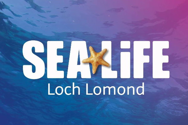 Loch Lomond Sealife Aquarium slide 2
